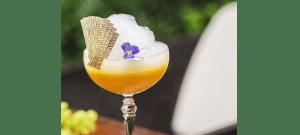 Le Gin, la nouvelle star du bar
