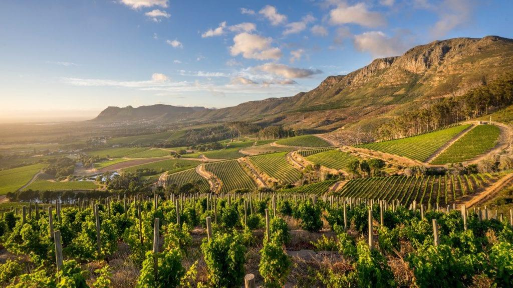 Le Domaine Klein Constantia est un vignoble situé à 7 km de l'océan, à Helderberg en Afrique du Sud. Son vin rouge Anwilka serait le meilleur du pays, d'après le grand critique américain Robert Parker.